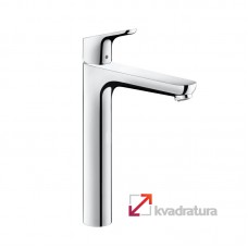 31531000 Hansgrohe Focus 31531000